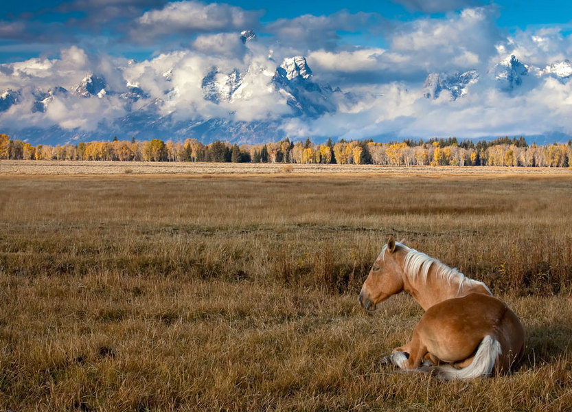 Wyoming | 0 | | COLORADO LANDSCAPE PHOTOGRAPHY - USA AND ...